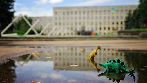 Вибори 2020 на Житомирщині: правила, які варто знати